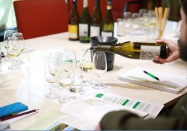 WSET course at Wine Story
